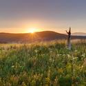 Polom nad Bartošovicemi v Orl. horách