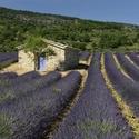 Adieu La Provence