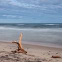 ..... Strážce pobřeží ...