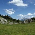 Alpská krajinka