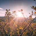 Podzimní atmosféra
