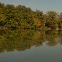 Hladina rybníka