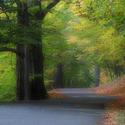 Podzim v Hukvaldské oboře
