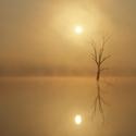 Další mlhavé ráno u rybníku