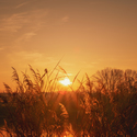 Ráno zalité sluncem