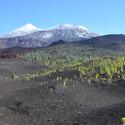 výstup na Teide