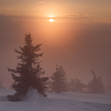 Mlhavý konec dne.