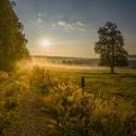 Šumavský ráno