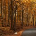 Podzim čaruje