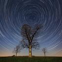 Hvězdy v pohybu