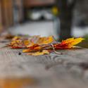 Podzim v Moravském krasu