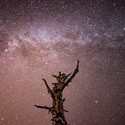 ~Strážce Galaxie~