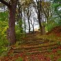 podzimní staré schody