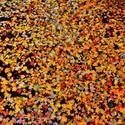 Podzimní vodní hladinka