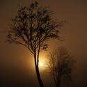 Východ slunce za mlhou