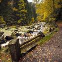 Podzim u Vydry