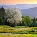 Jaro na Zelené Hoře