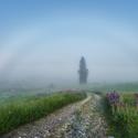Mlha veliká