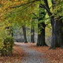 Podzim u Losinky