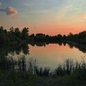 Rybník v podvečer