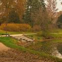 Barevný podzim v parku