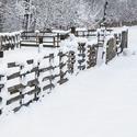 Bílý únor