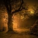 Pražská mlha