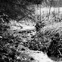 Korytem potoka