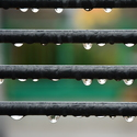 je po dešti....