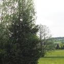 Česká krajina2