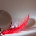 Těžítko a červené peříčko