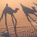 Brouzdáni pískem