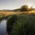 Pošumaví - Mečíchovské rybníky