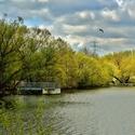 Nad habrovickým rybníkem