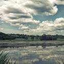 zarůstající rybník
