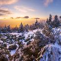 Vyprávění o zimě
