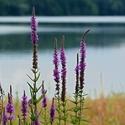 pozdrav z Těrlické přehrady....