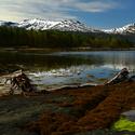Po odlivu - Norsko
