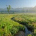 Pohořské rašeliniště