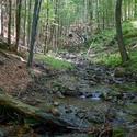 Huťský potok
