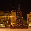 Umělý stromek,  Mariánský sloup a za ním muzeum Citer v Ostravě