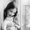 Kočičí přítel