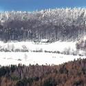 Pohled na Jestřebí hory