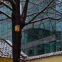 Moderní architektura