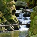 Na řece  II