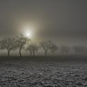 Slunce a mlha