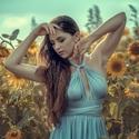 Krása slunečnic