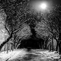 Bezová ulička zasněžená
