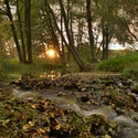 večer potokem frčel