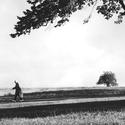 Žena, která sázela stromy